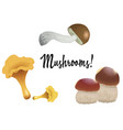 a set of different mushrooms isolated on white vector image vector image