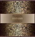 abstract background with vintage frame vector image vector image