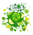 candy lime and apple lolly dessert colorful icon vector image