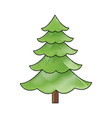 cartoon pine tree natural plant of forest image vector image vector image