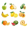 Colorful fruit icons set apple vector image vector image