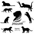 JaguarSet vector image vector image