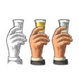 male hand holding glass tequila vintage vector image vector image