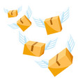 package boxes with wings vector image vector image
