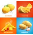 potato realistic 2x2 design concept vector image vector image