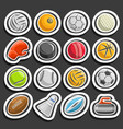 set sports balls vector image