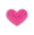 fur pink heart for Valentines Day isolated on vector image vector image