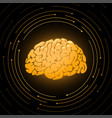 golden brain smart mind vector image