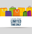 sale bags to special online promo vector image vector image