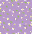 Seamless flower pattern camomile vector image vector image