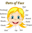 cartoon child girl vocabulary of face parts vector image