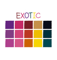 Exotic Color Tone without Code vector image vector image