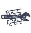 plumbing and repair of water supply vector image vector image