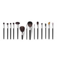 realistic cosmetics brush for makeup isolated vector image vector image