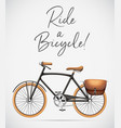 ride a bicycle scene vector image vector image