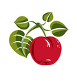 Single red simple apple with green leaves ripe vector image vector image