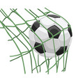 soccer ball on net vector image vector image