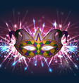 llustration of a carnival mask mardi gras with vector image