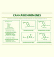 cannabichromene with structural formulas vector image vector image