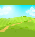 cartoon summer green field and road vector image