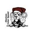 christmas american cocker spaniel dog - peeking vector image vector image