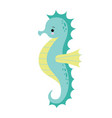 cute cartoon sea horse isolated seahorse on a vector image