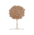 decorative brown line tree in zentangle style vector image vector image
