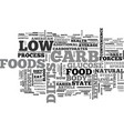 who ever said low carb diets meant no carb text vector image vector image
