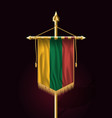 flag of lithuania festive vertical banner wall vector image vector image