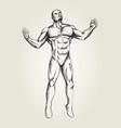 human figure vector image vector image