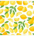 lemons fresh fruits and flowers blossom floral vector image vector image