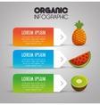 organic infographic presentation icon vector image