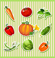 sample design of placard with cute ripe vegetables vector image