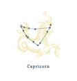 zodiacal constellation capricorn on background vector image vector image