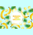 banana fruit colorful circle copy space organic vector image