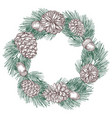 green spruce branches wreath with cones vector image