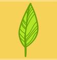 leaf doodle nature vector image