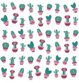 pattern with cactus and succulents in flowerpots vector image vector image