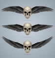 Three evil skulls with wings vector image vector image