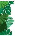 tropical leaves palm tree border decoration vector image vector image