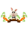An empty template with a smiling rabbit vector image vector image