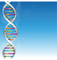 DNA Background vector image
