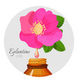 eglantin oils promo poster with wild rose flower vector image vector image