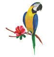 Isolated watercolor parrot with tropical flowers vector image