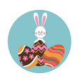 rabbit easter eggs decorative ornament vector image