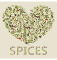 heart from spices vector image