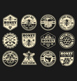 beekeeping and honey collection of badges vector image vector image