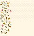 flowers set isolated on white background vector image vector image