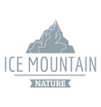ice mountain logo simple gray style vector image vector image