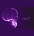 Skull constructed with violet lines